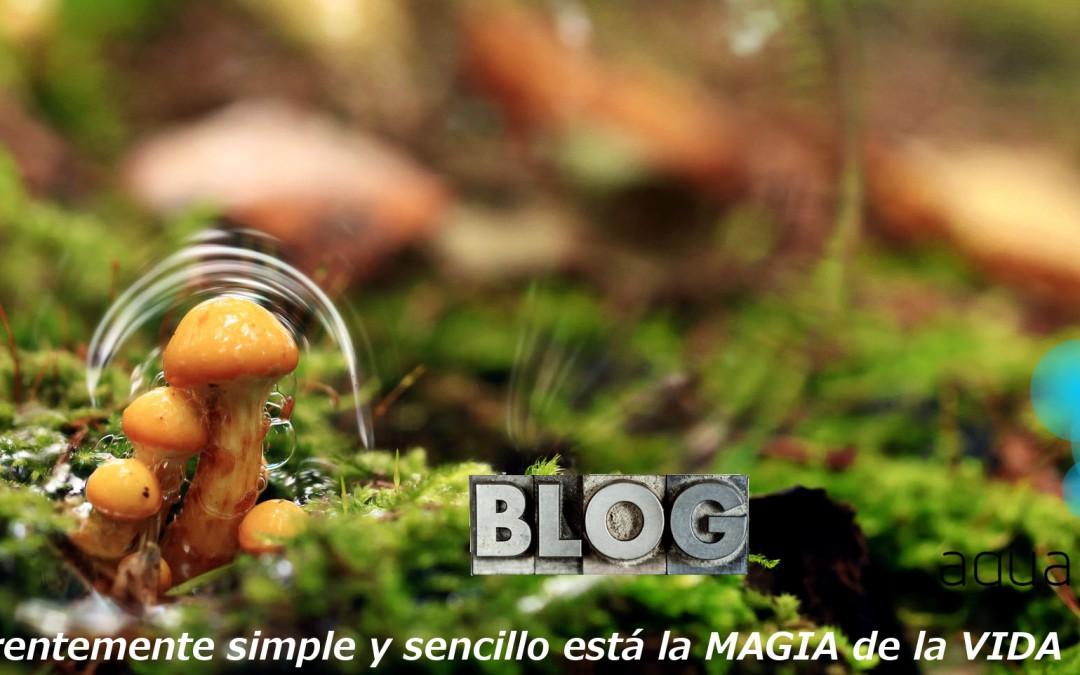 Nuevo blog aguapuraesvida.com