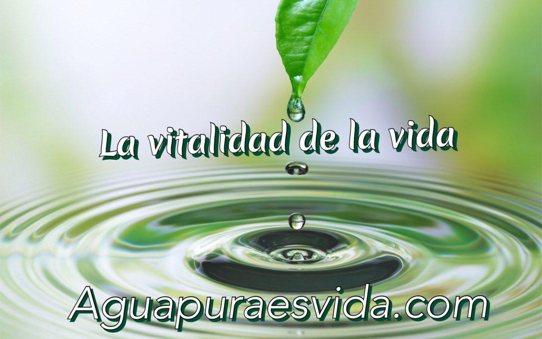 """Vitalización, vitalizadores… """"Vitalizar el agua"""" Necesidad o negocio."""